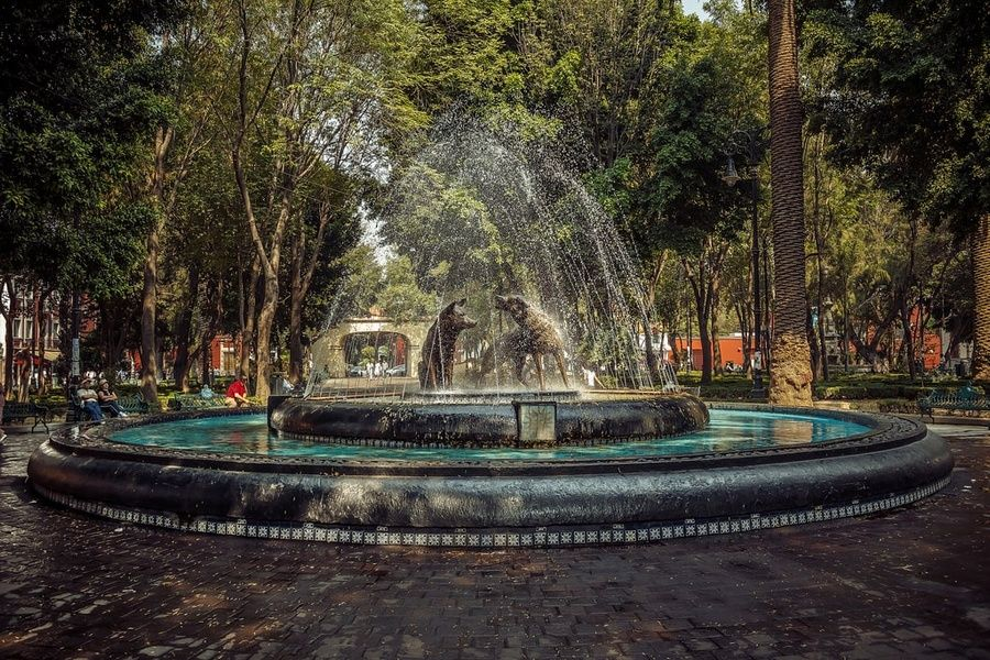 Coyoacan is where to stay in Mexico City