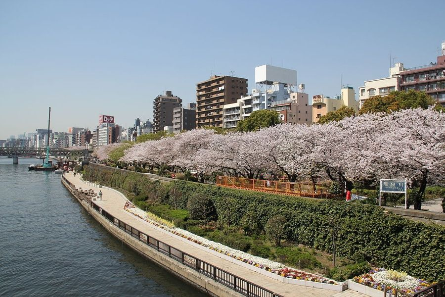 Kuritsu Sumida Park is an awesome place to explore if you're looking for what to do in Tokyo in 3 days