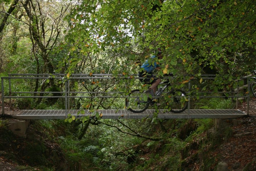 Biking in Ballyhoura is a great thing to do in Limerick