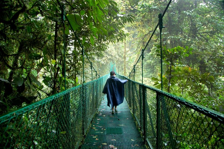 Where to stay in Costa Rica for amazing nature? Monteverde