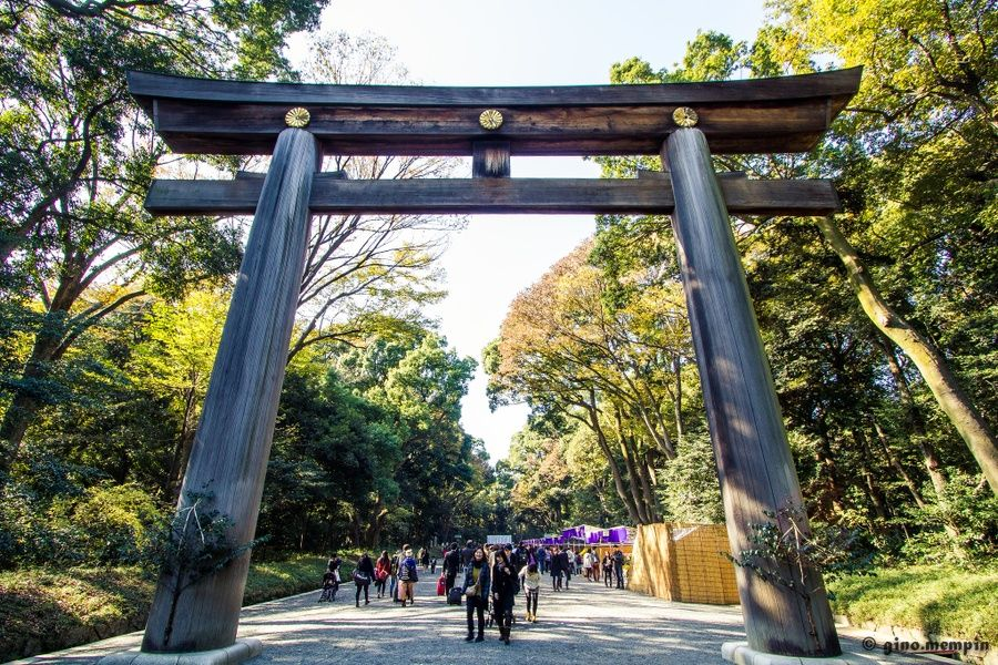 Shrines Cool Things to Do in Tokyo