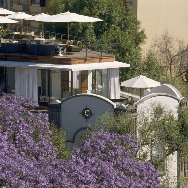 Condesa DF offers guests a glorious view