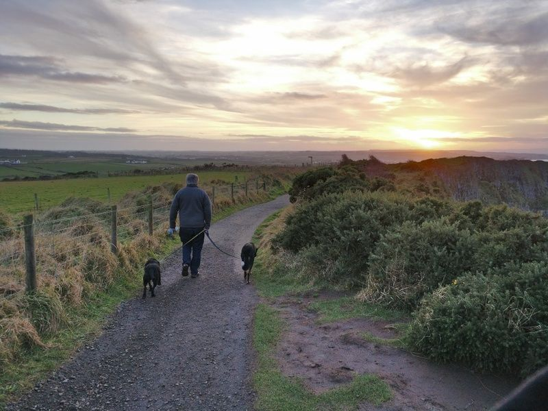 Exploring the Shannon Regional Walking Trails is one of the best thing to do in Shannon Ireland