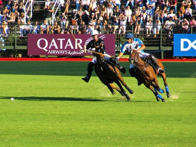Catching a polo match is one of the best things to do in Buenos Aires