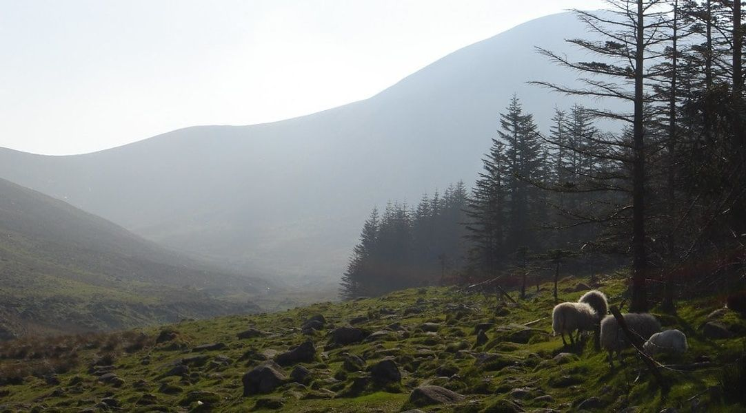 Camping in the Mourne Mountains is one of the coolest things to do in Northern Ireland