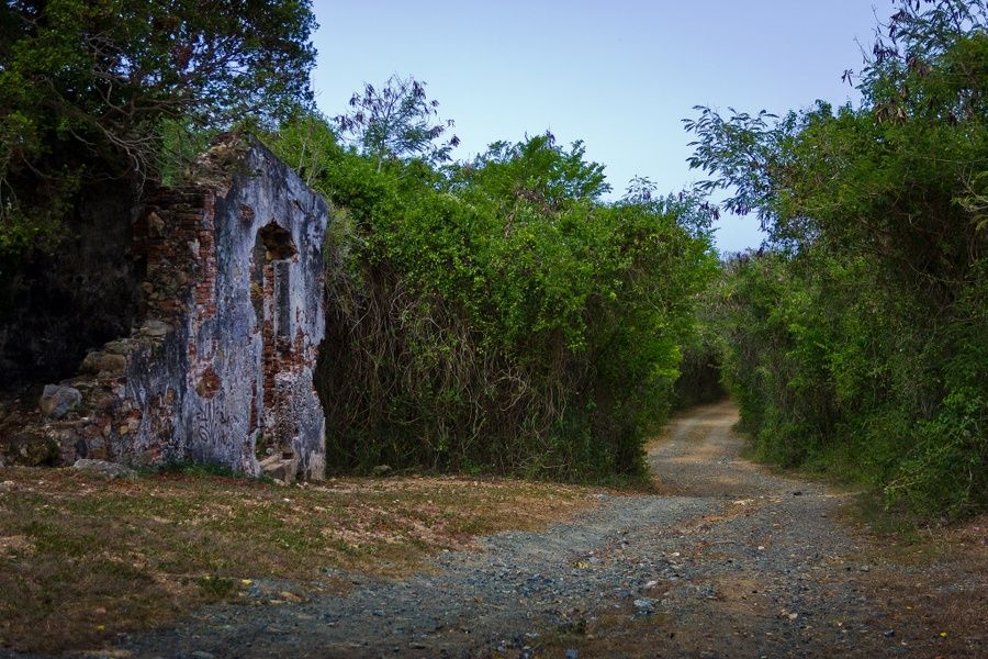 Guaniquilla Nature Reserve is one of the Best Places to Visit in Puerto Rico