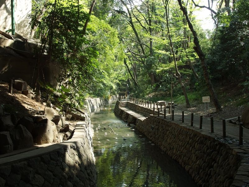 Todoroki Valley is an awesome place to explore if you're looking for what to do in Tokyo in 3 days