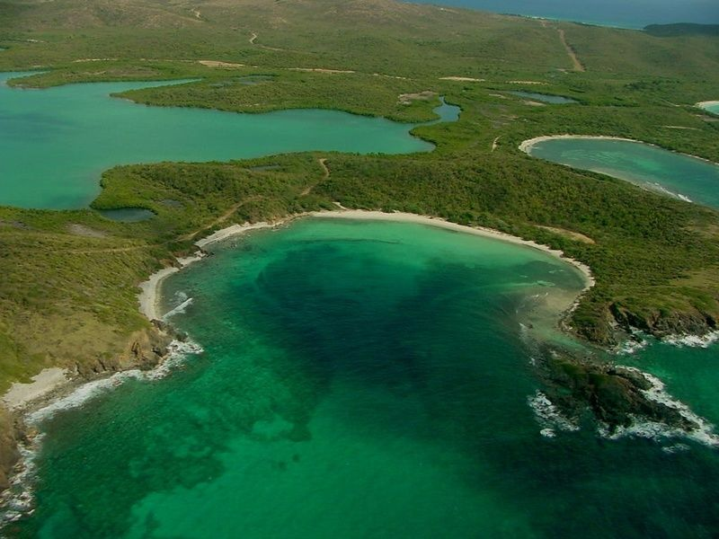 The National Wildlife Refuge in Vieques  is one of the best places to vacation in Puerto Rico