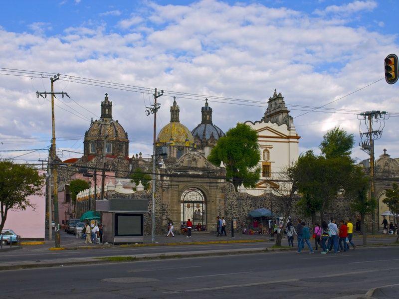 Museo de El Carmen is what to do in Mexico City