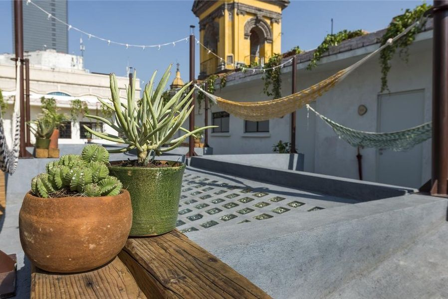 The generous rooftop at Chaya B&B makes it one of the best places to stay in Mexico City