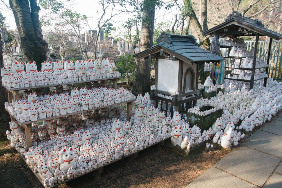 Gotokuji Temple is a cool place to explore if you're looking for what to do with 3 days in Tokyo