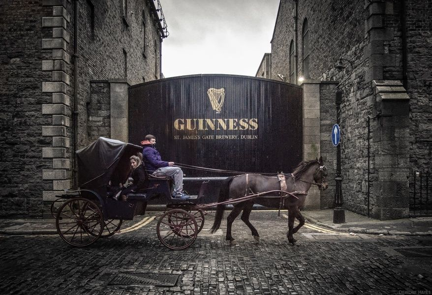 Having a pint of Guinness at the Guinness Brewery is one of the best things to do in Ireland