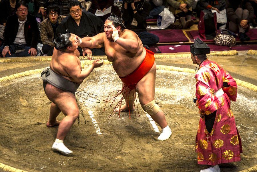 Sumo Must Do in Tokyo