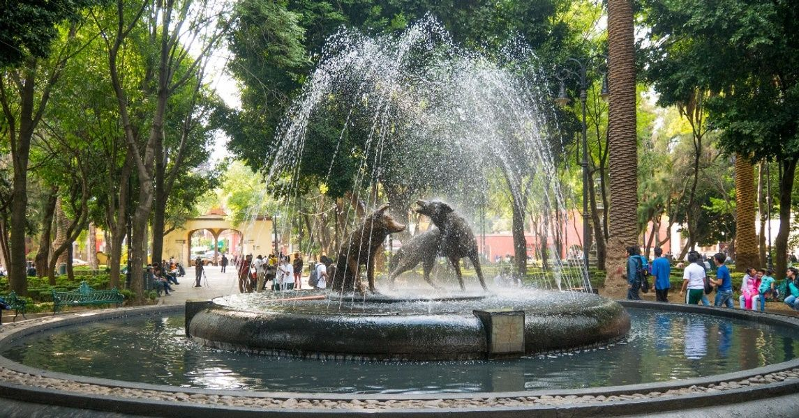 Coyoacan Places To Visit In Mexico City