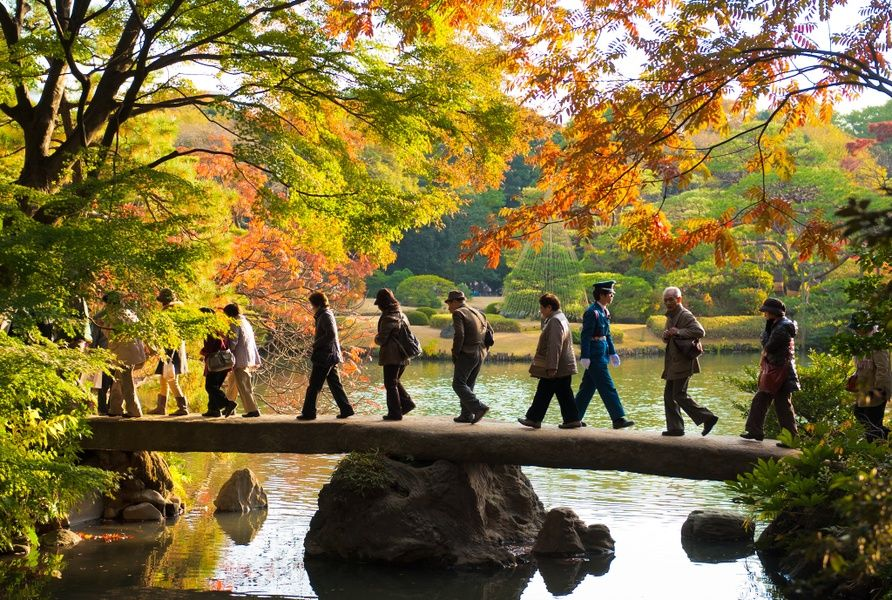 A cool thing to do in Tokyo is explore the awesome nature nearby