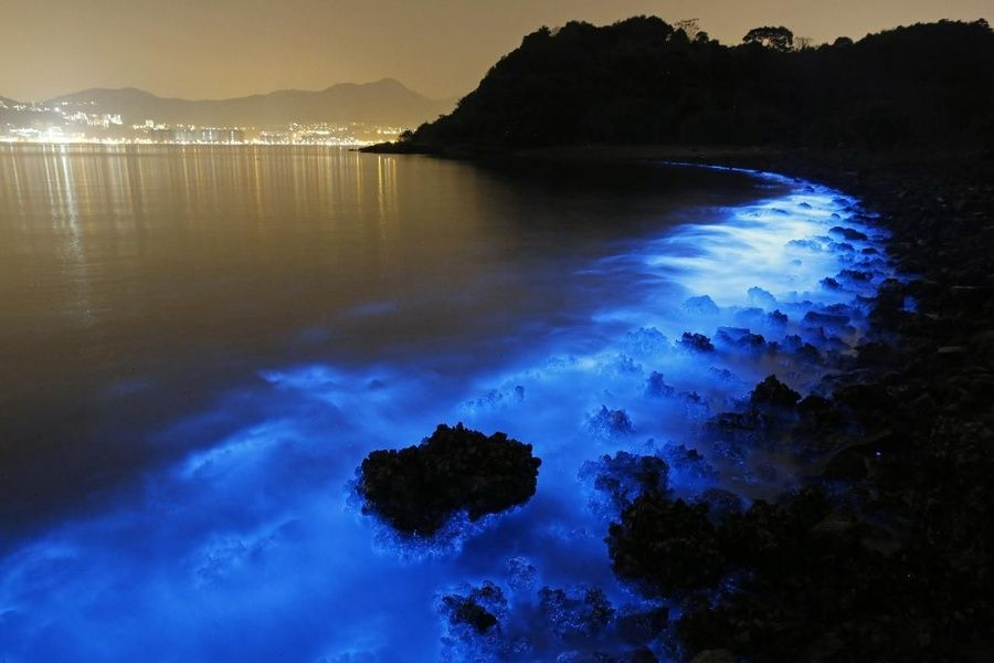 Nighttime boat tour of bioluminescent Parguera Bay is one of the expedia Puerto Rico excursions ViaHero loves
