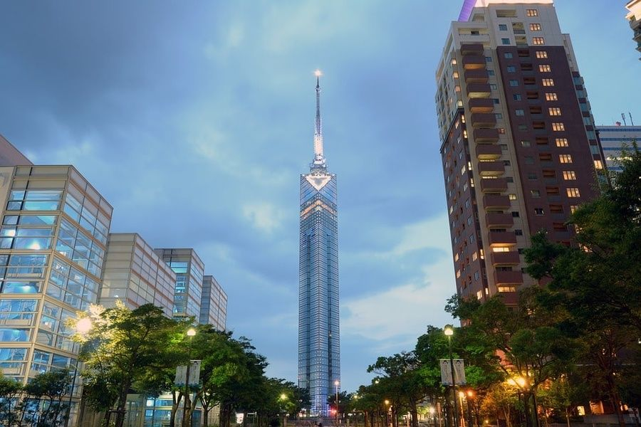 Seeing the sea from the Fukuoka tower is one of the Things to do in Fukuoka Japan