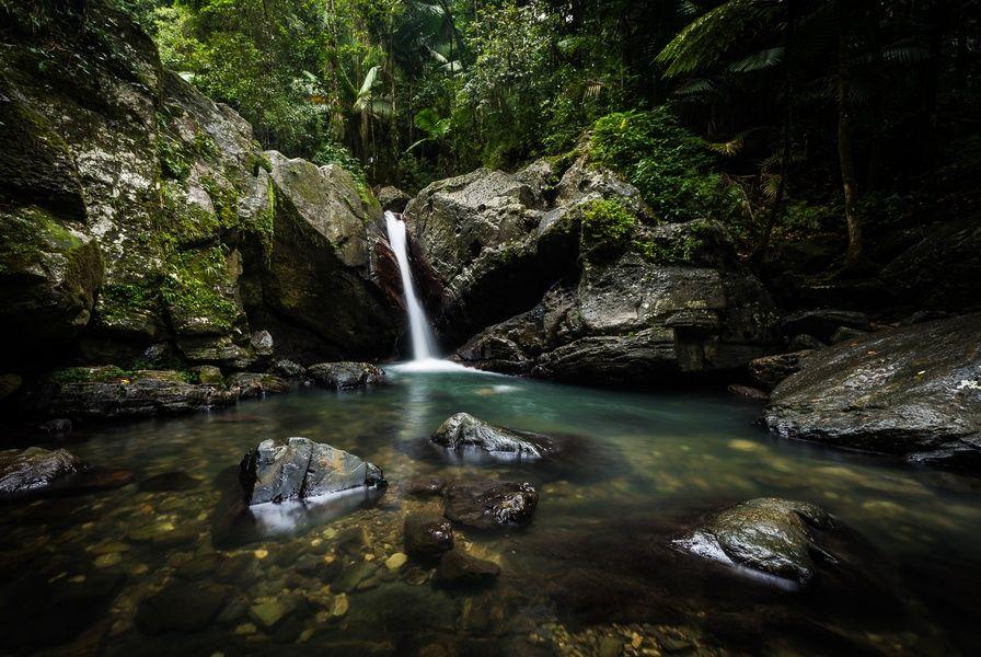 El Yunque Fun Things to Do in Puerto Rico