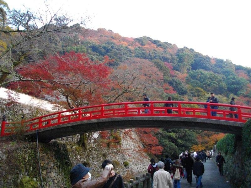 Minoo National Park in Osaka Japan