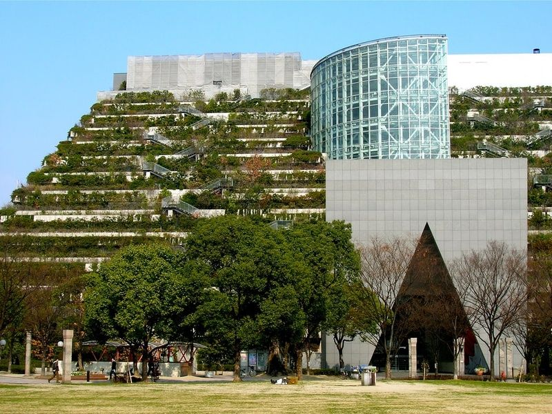 Climbing the gardens of ACROS is one of the Things to do in Fukuoka Japan
