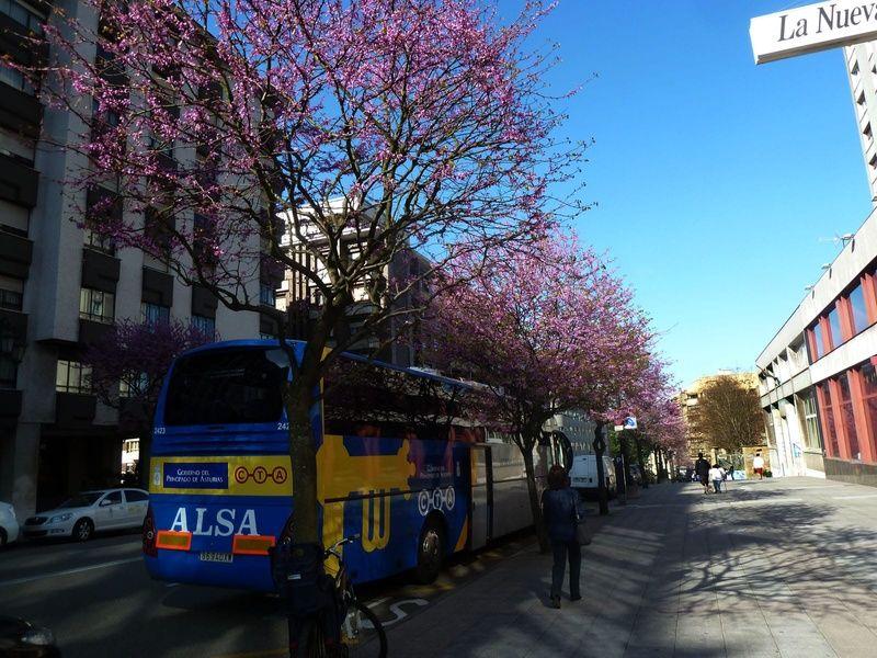 Coach bus Spain transportation