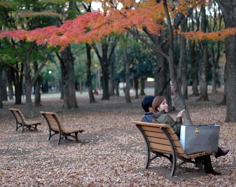 A first step of planning at Tokyo Honeymoon is deciding when to visit