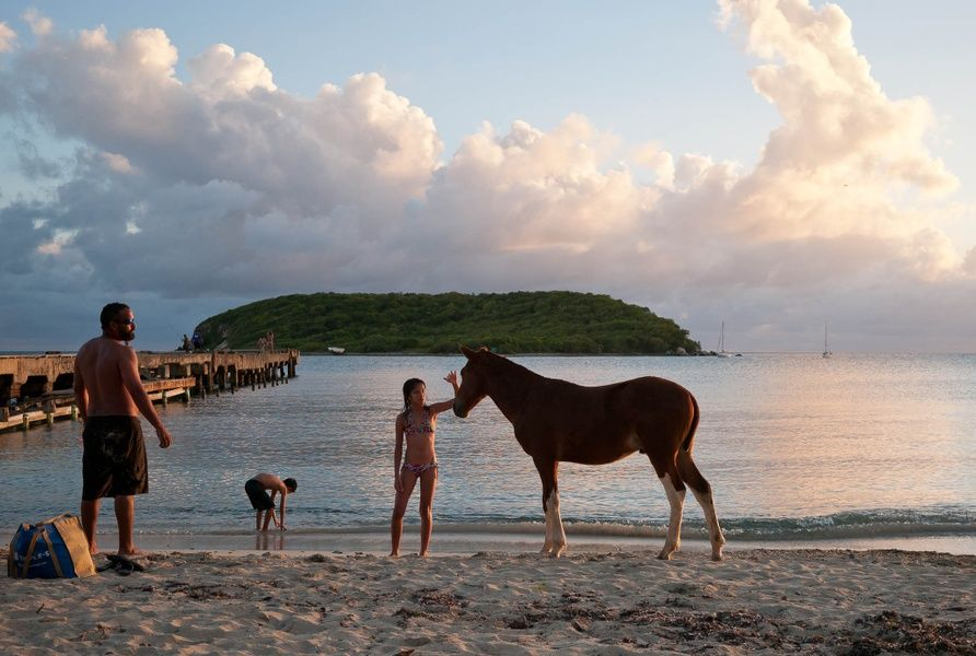 Nature Things to do in Puerto Rico with Kids