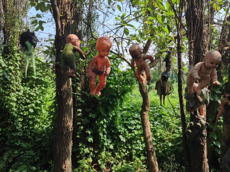 The Island of Dolls is one of the things to see in Mexico City
