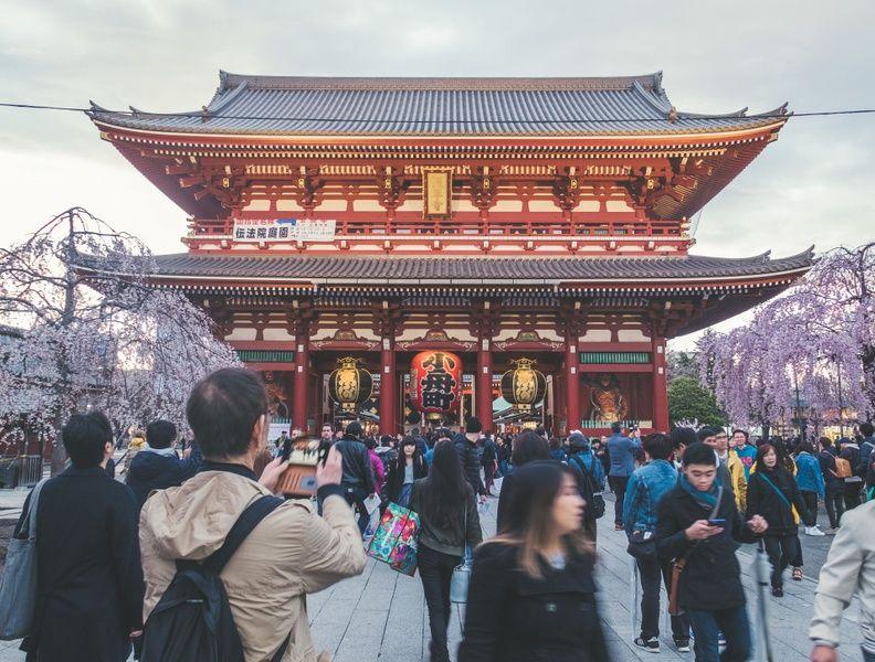 Availability Japan Travel Agency