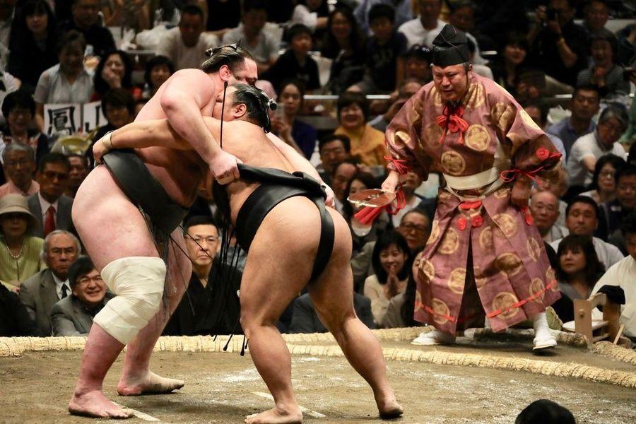 Sumo Must Do Japan