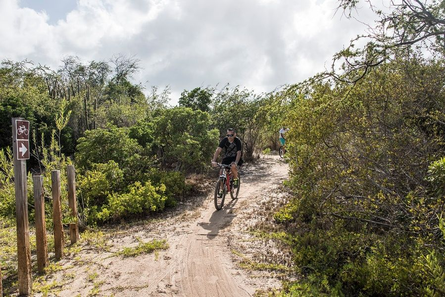Mountain biking through Rincon is an adventurous things to do in Puerto Rico