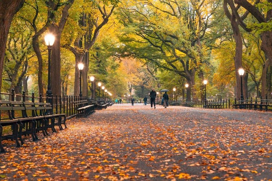 Fall Best Time to Visit New York