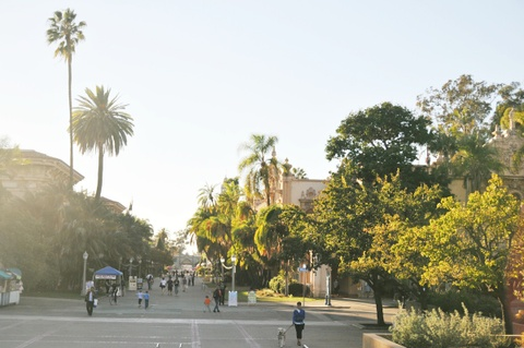 Your Guide to San Diego's Public Transit System, San Diego, CA
