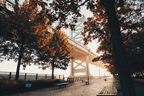Image of Your Guide to the Perfect Fall Day in Philadelphia