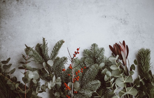 Image of How to Entertain For the Holidays in a Super Small Space