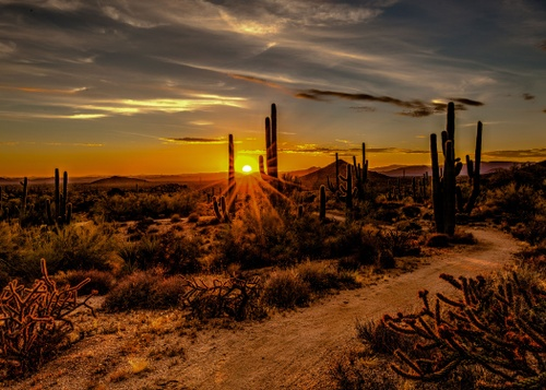 Image of 5 Best Phoenix Neighborhoods for Outdoor Enthusiasts