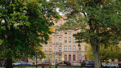 Image of Living in the Bedford-Stuyvesant Neighborhood in Brooklyn