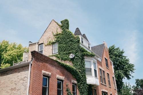 Image of Living in Oak Park, Illinois