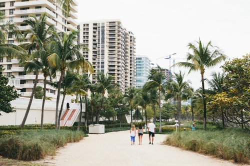 Image of The 6 Best Running Routes in Miami