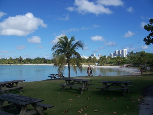 Image of 9 Best Parks in Miami, According to Neighborhood