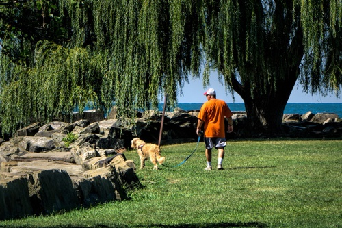 Image of The Pet Lover's Guide to Cleveland