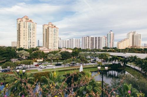 Image of 20 Activities in Miami Under $20