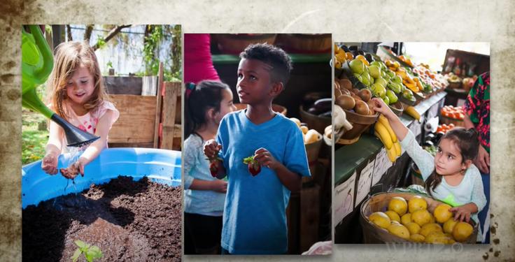 Virtual Farmer's Market Field Trip
