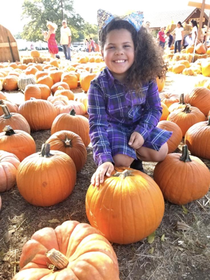 Pumpkin Patch Virtual Adventure