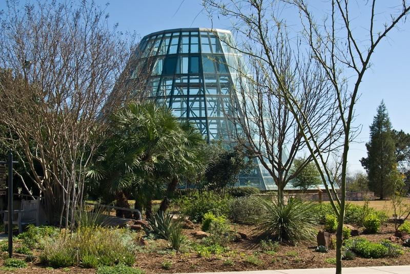 botanical-garden-san-antonio