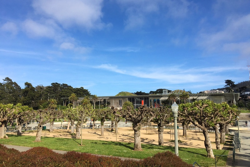 Academy of Science in Golden Gate Park